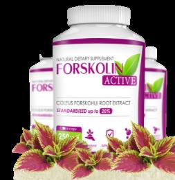Forskolin Active - comentários - forum - opiniões
